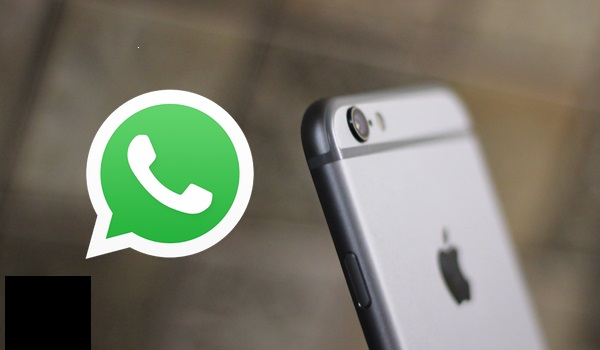 WhatsApp For iOS adds 3D Touch Peek And Pop and adds up more additional settings